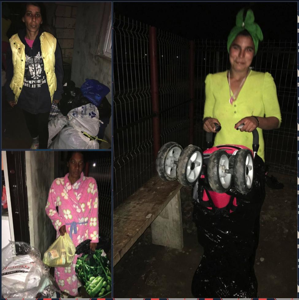 proiect stefanesti daruirea bunurilor_7.png