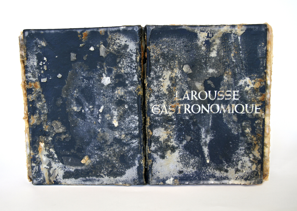 Relic (Larousse Gastronomique, Prosper Montagné)  2013 Found book, monosodium glutamate (MSG), epoxy 16x10x2.5 inches