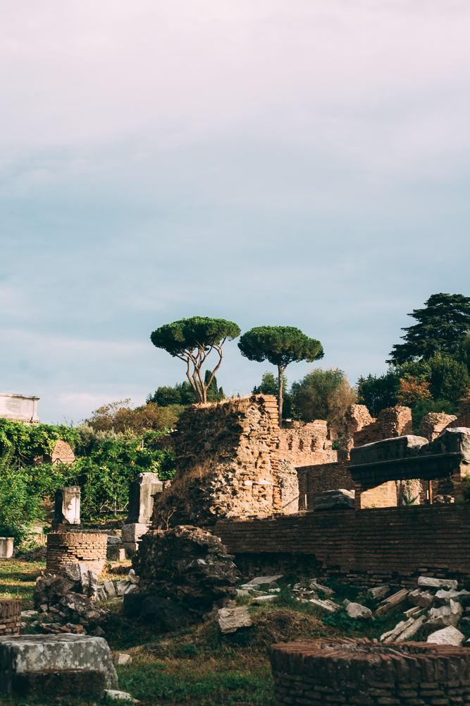 j.andrade_Rome-5667.jpg