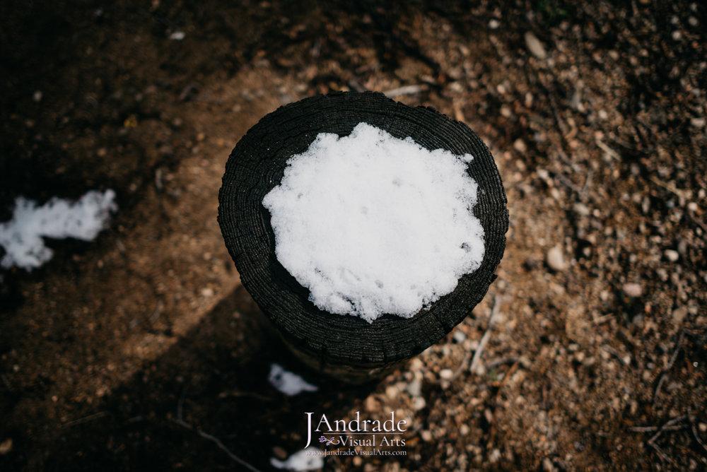 J. Andrade Visual Arts-9532.jpg