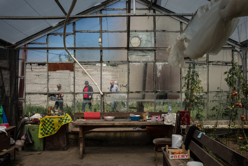 Upstart: Lisi Green Houses