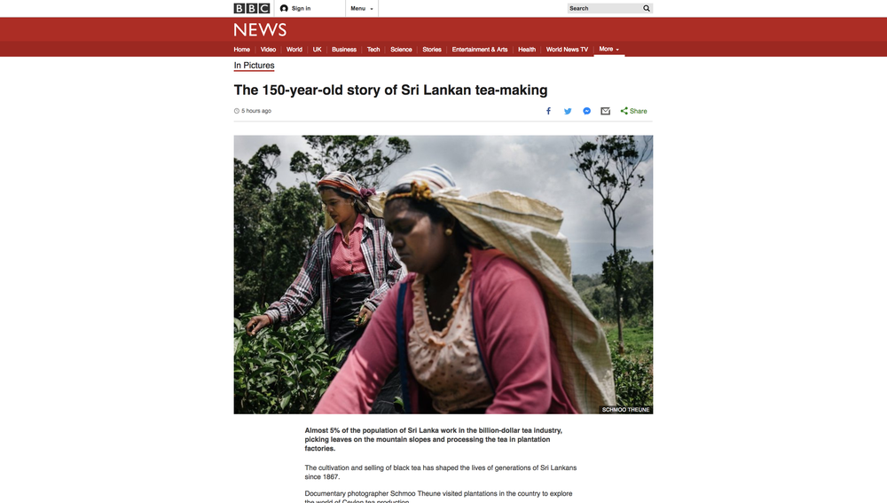 The_150-year-old_story_of_Sri_Lankan_tea-making_-_BBC_News.png