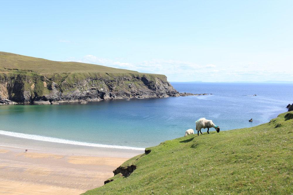 20160524-Ireland-48.jpg