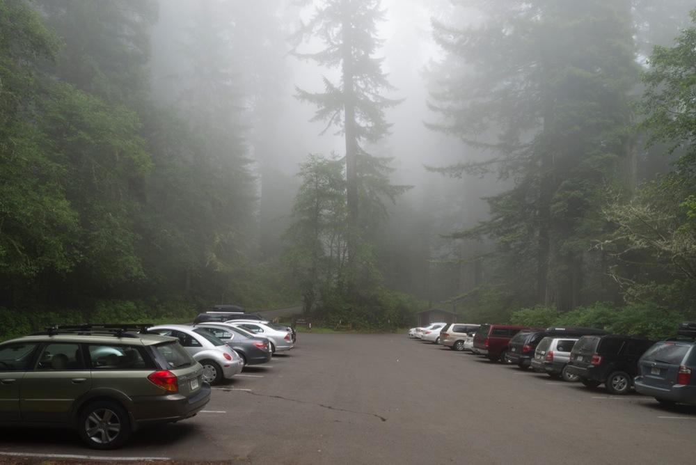 "destination parking   8"" x 12"",12"" x 18"" or 20"" x 30""  2012"