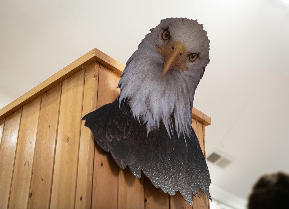 """i am eagle   8"""" x 8"""", 12"""" x 12"""" or 20"""" x 20""""  2018"""