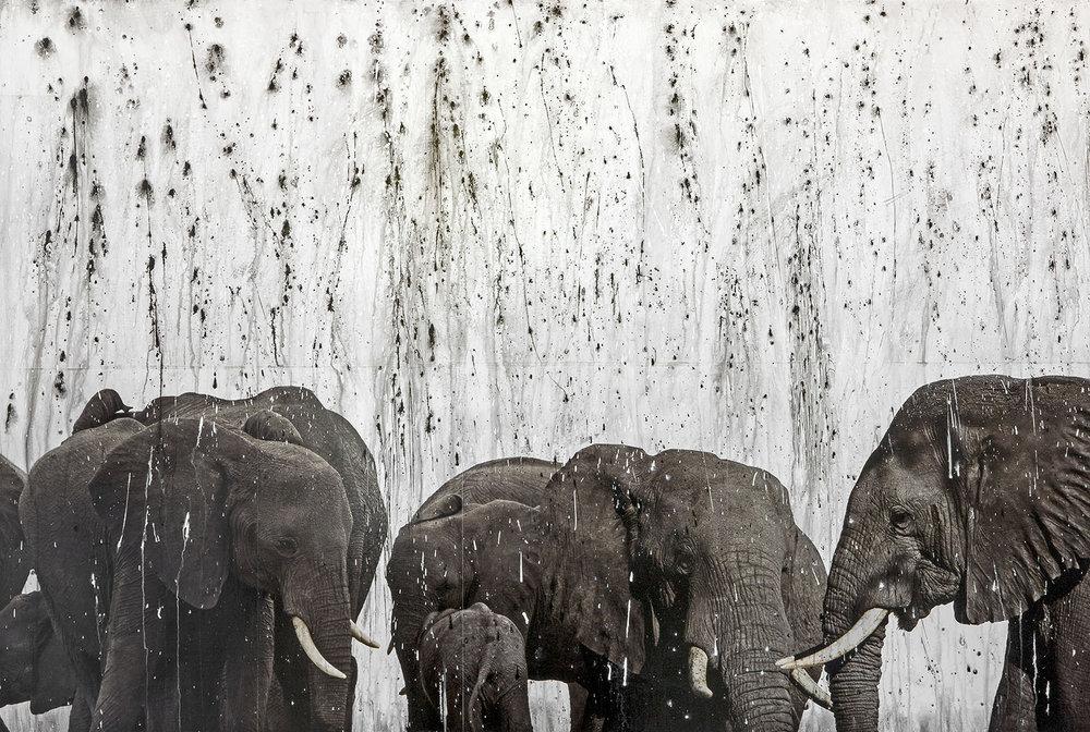NAMIBIAN RAIN
