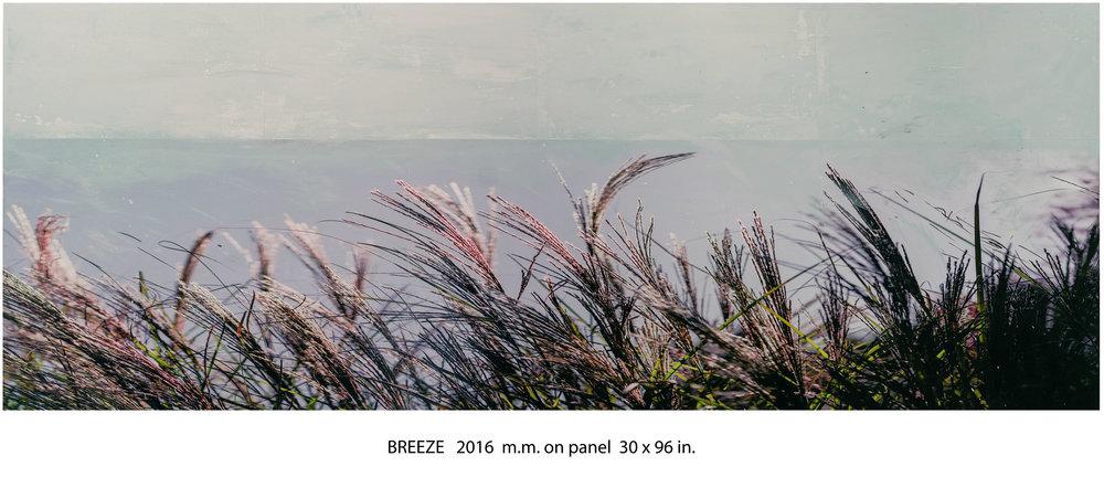 Breeze.jpg