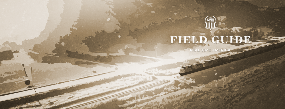 FIELD GUIDE COVER | UNION PACIFIC