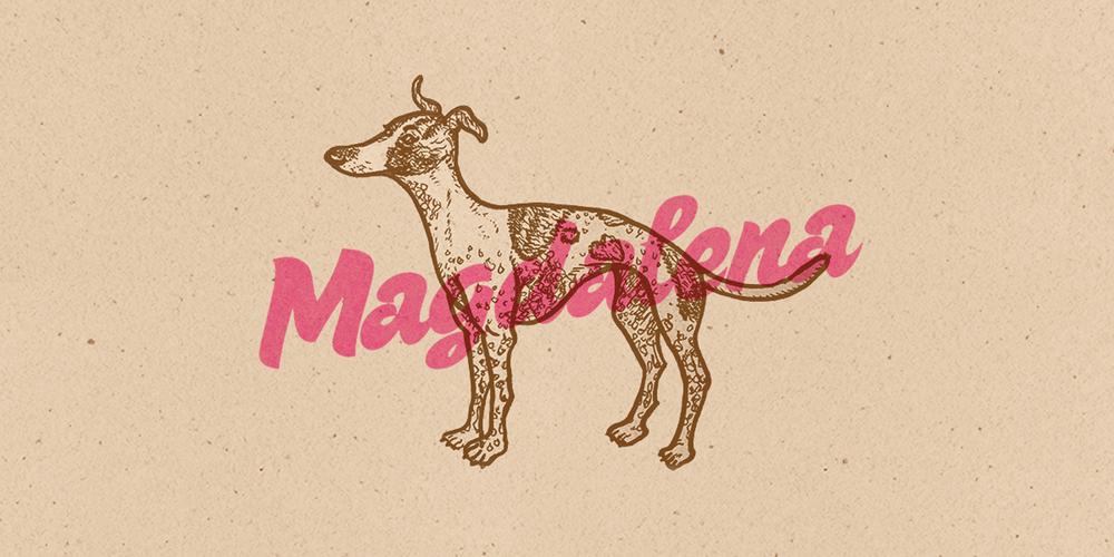 magdoo-portfolio-website.png