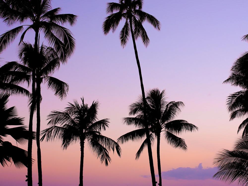 laurennicolefoot-blog-hawaii-oahu-2100-7.jpg