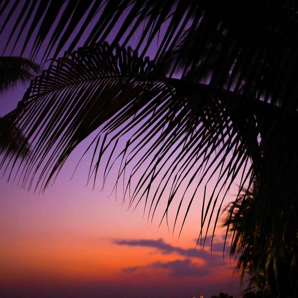 laurennicolefoot-blog-hawaii-oahu-2100-11.jpg