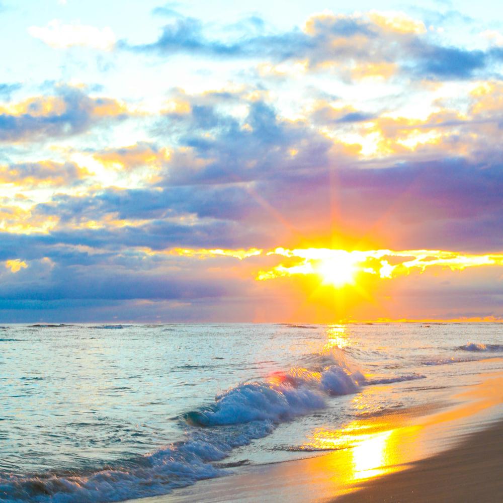 laurennicolefoot-blog-hawaii-oahu-2100-53.jpg