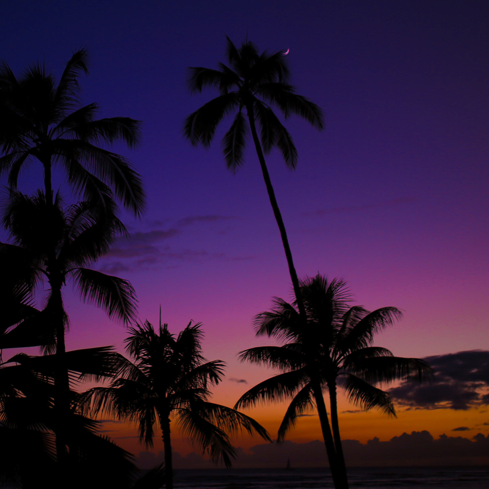 laurennicolefoot-blog-hawaii-oahu-2100-82.jpg