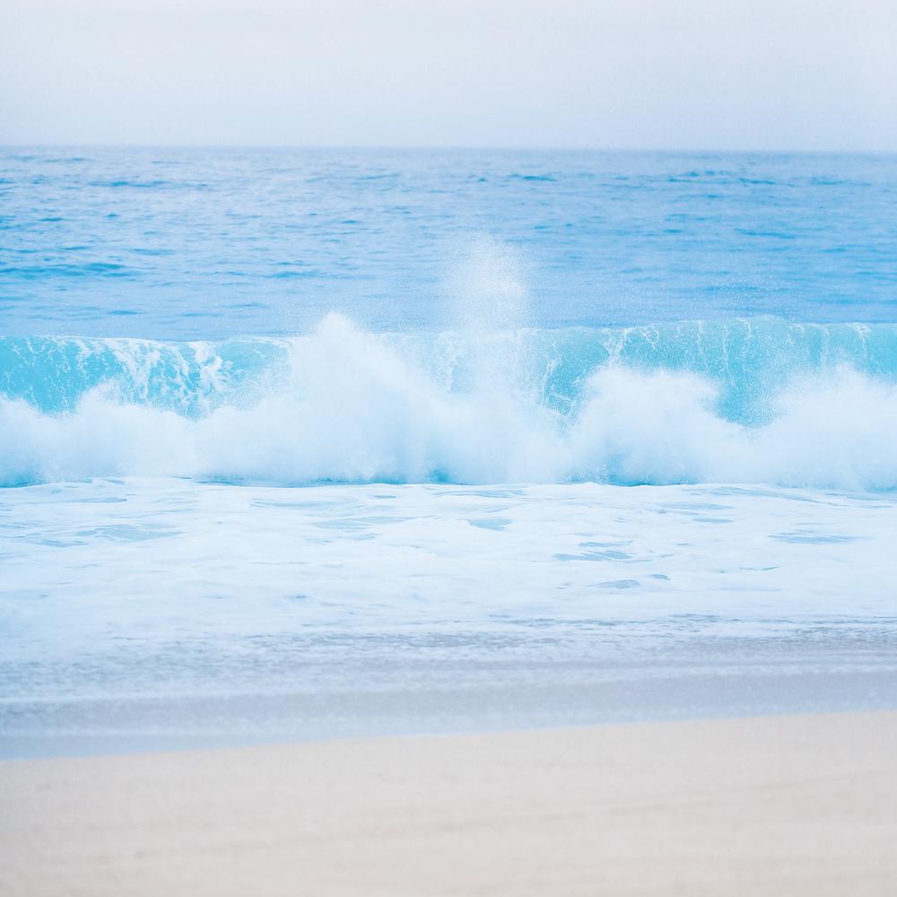 laurennicolefoot-blog-hawaii-oahu-2100-39.jpg