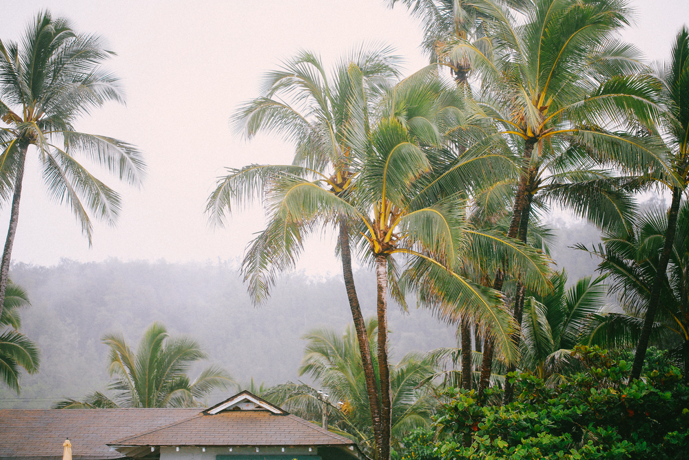 laurennicolefoot-blog-hawaii-oahu-2100-40.jpg
