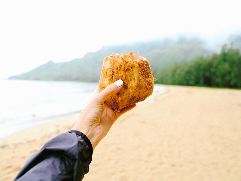 laurennicolefoot-blog-hawaii-oahu-2100-46.jpg