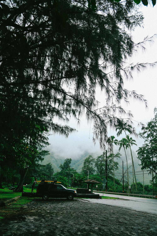 laurennicolefoot-blog-hawaii-oahu-2100-45.jpg