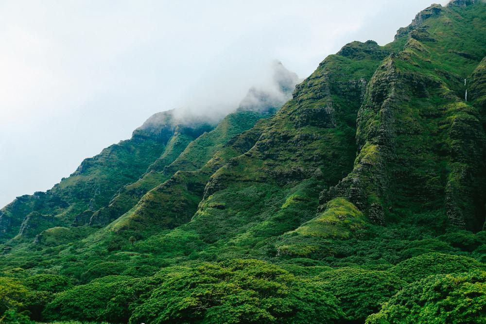 laurennicolefoot-blog-hawaii-oahu-2100-47.jpg