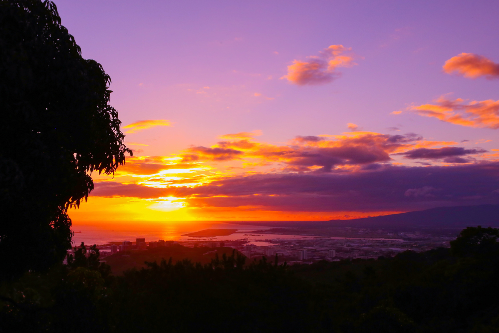 laurennicolefoot-blog-hawaii-oahu-2100-76.jpg