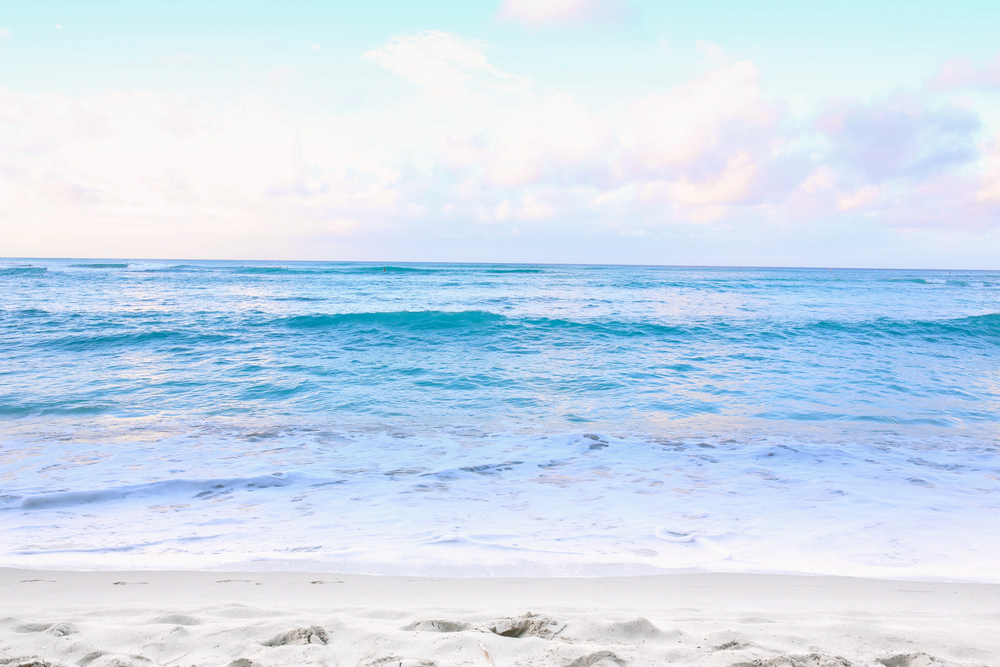 laurennicolefoot-blog-hawaii-oahu-2100-88.jpg