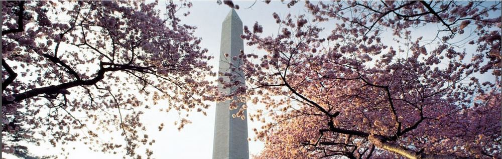dc monument below.JPG