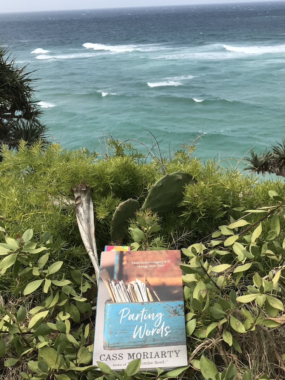 'Parting Words' by Cass Moriarty overseeing Frenchman's Cove at Stradbroke Island. Moriarty's skillfully unfolding family mystery is a perfect and thoughtful holiday read. I couldn't put it down.