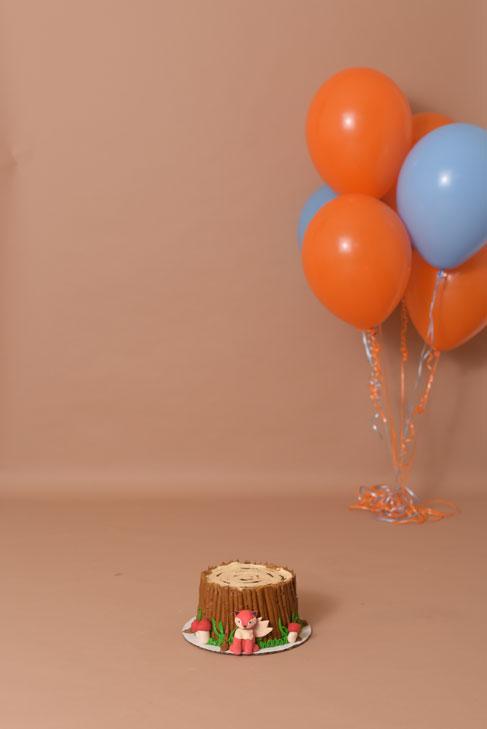 baby-cake-smash-1st-birthday-culpeper-va-12.jpg