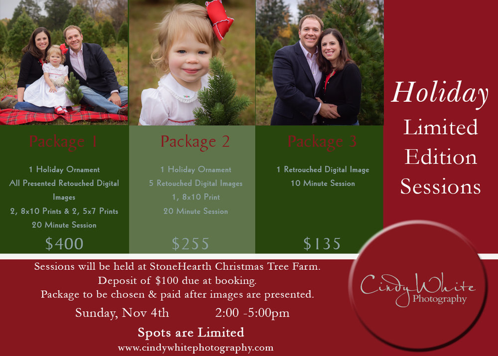 holiday_portrait_sessions_culpeper_2018