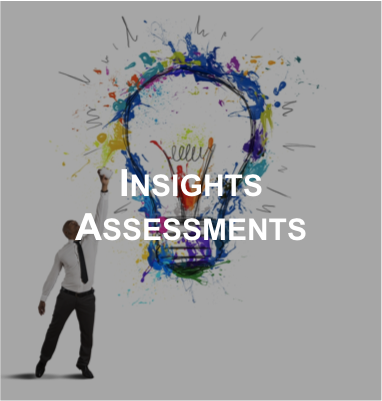 Website-c4g-Solution-InsightsAssessment-2017.png