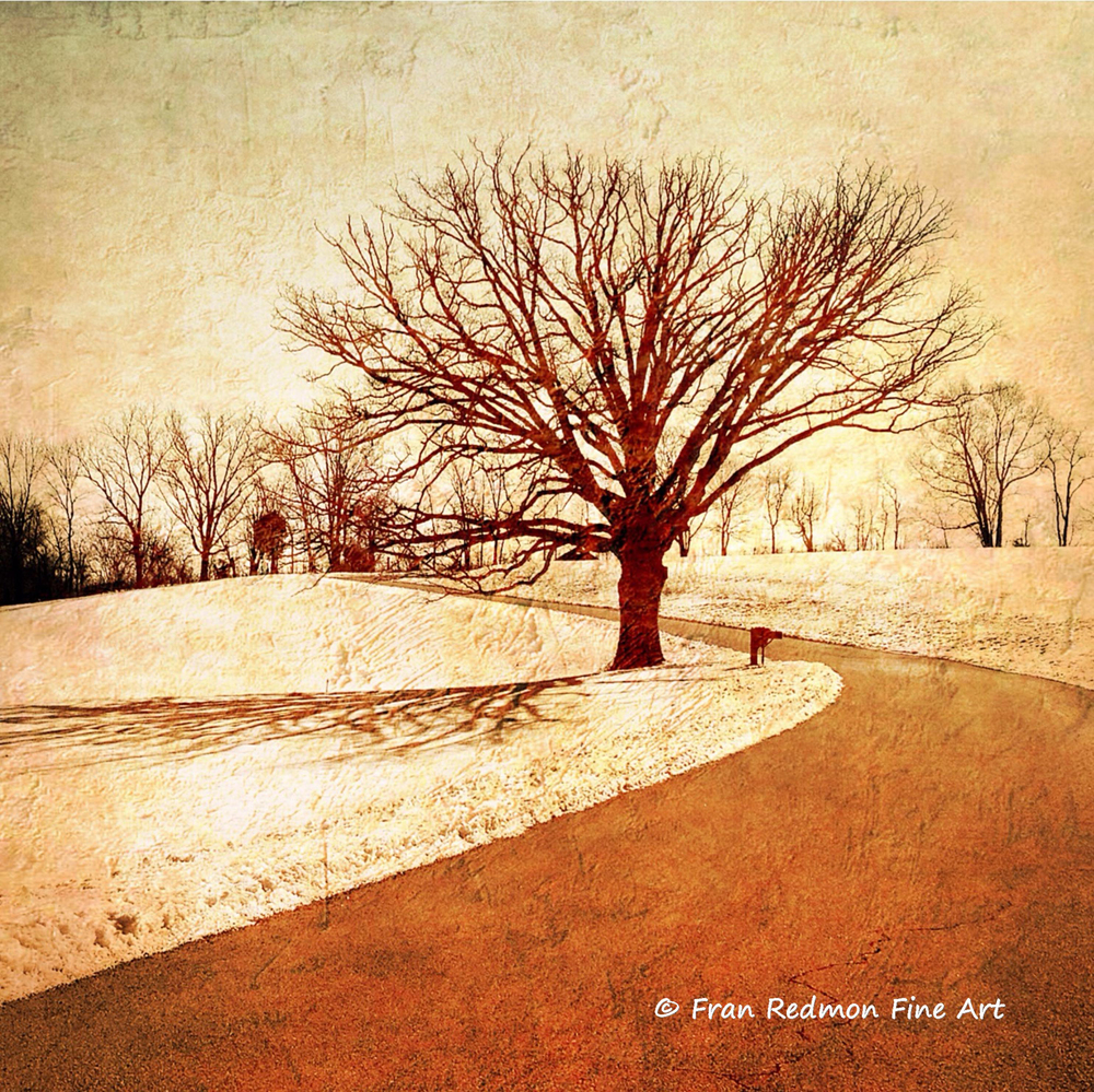 """MANIPULATED PHOTO BY FRAN REDMON""""SHADOW IN THE BEND"""""""