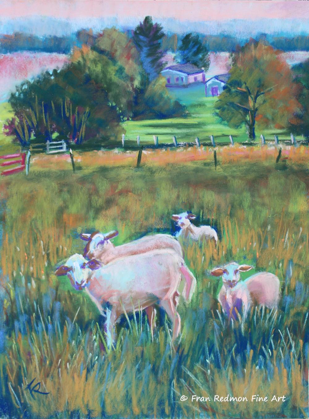 15-04-10 Farmer Joe's Sheep Logo(1).jpg