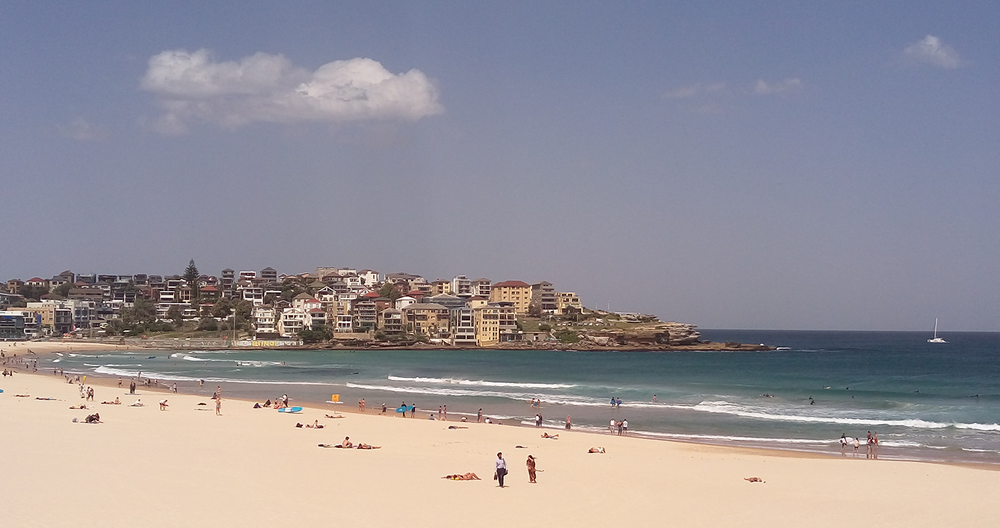 South Bondi Amenities_Sprout_01.png