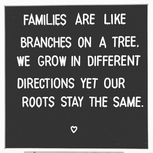 @therootedtreeshop . #therootedtree #Bedeeplyrooted #truth #intentionalliving #smallbusiness #groomsmengift #groomsgift #weddinggift #menswatch #guygift #woodwatch #woodglasses #leatherjournal #adventure #leathercuff #leatherbracelet #wanderlust #woodburnedart #socialgood #watchesofinstagram #uniquewatch #coolgift #hipster #minimalist #leathergoods #handcrafted #hipsterfashion #industrialpipe #beardman #beardsofinstagram