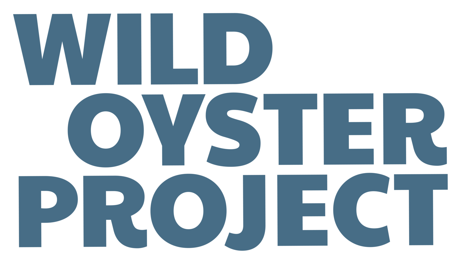 Wild Oyster Project