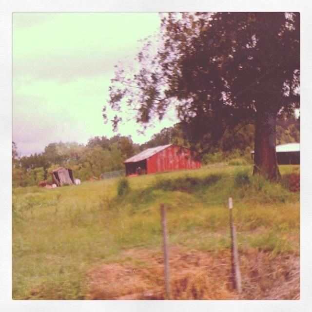 loreauville barn.jpg