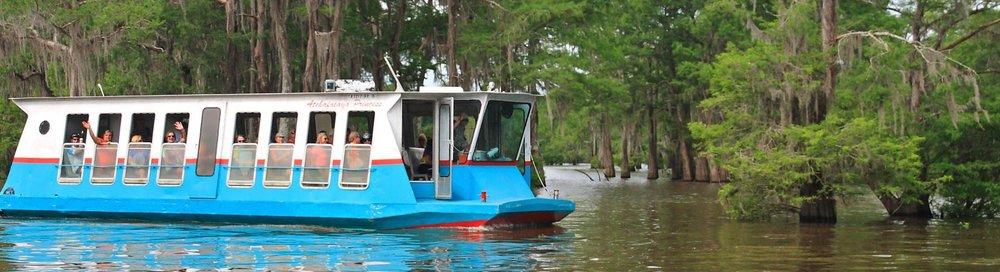 swamp tour.JPG