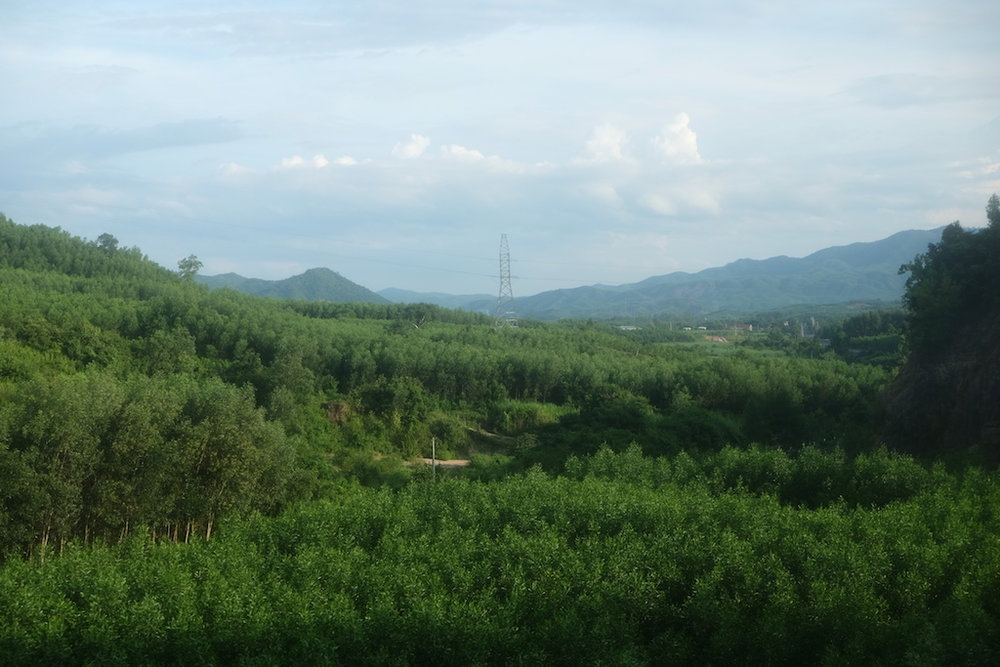 Green hills of Vietnam