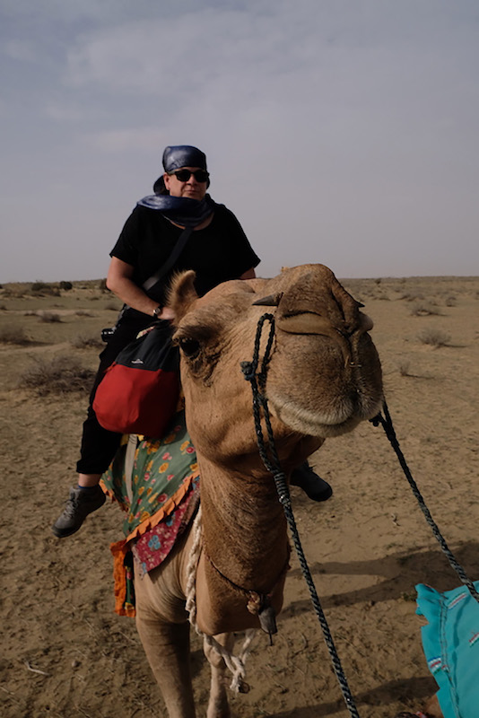 Friendly Camel, Thar Desert