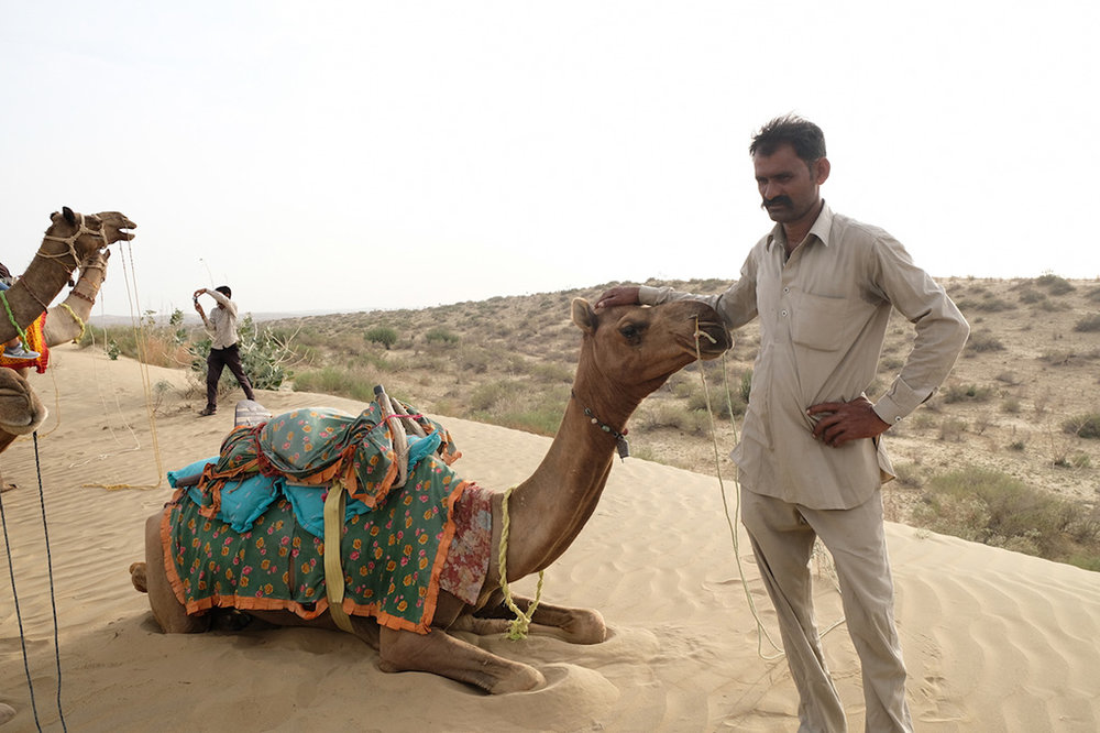 Our Camel driver, Thar Desert