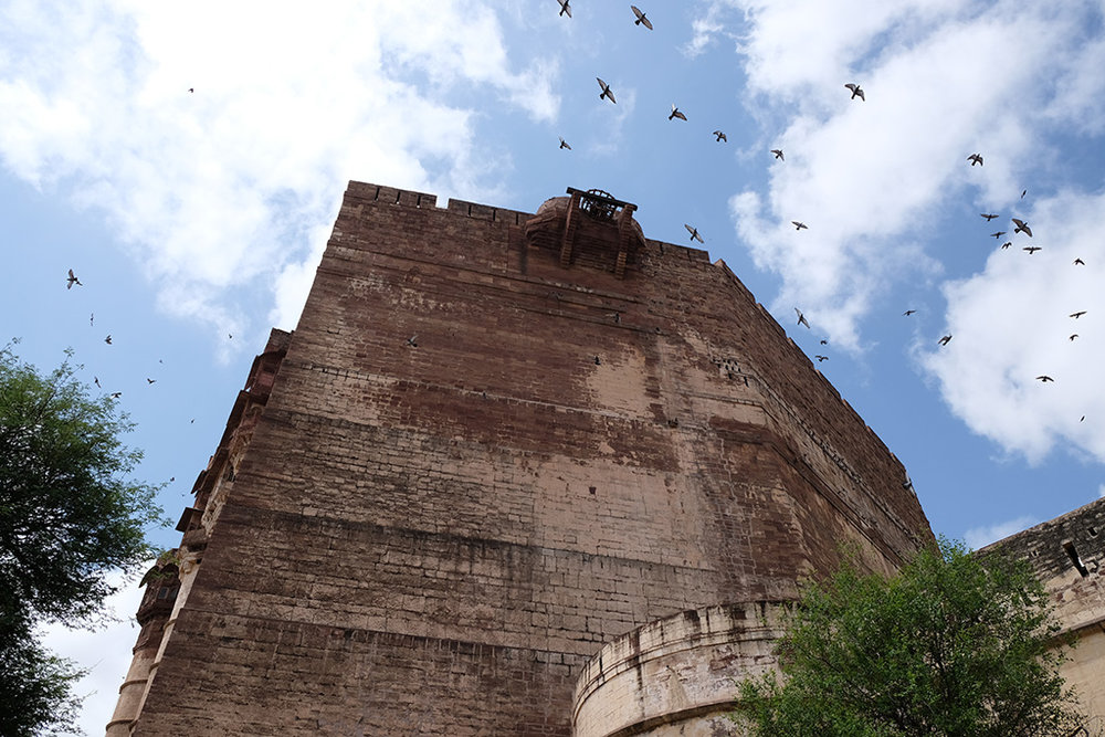 Always birds in the photo, Merangarh Fort, Jodhpur