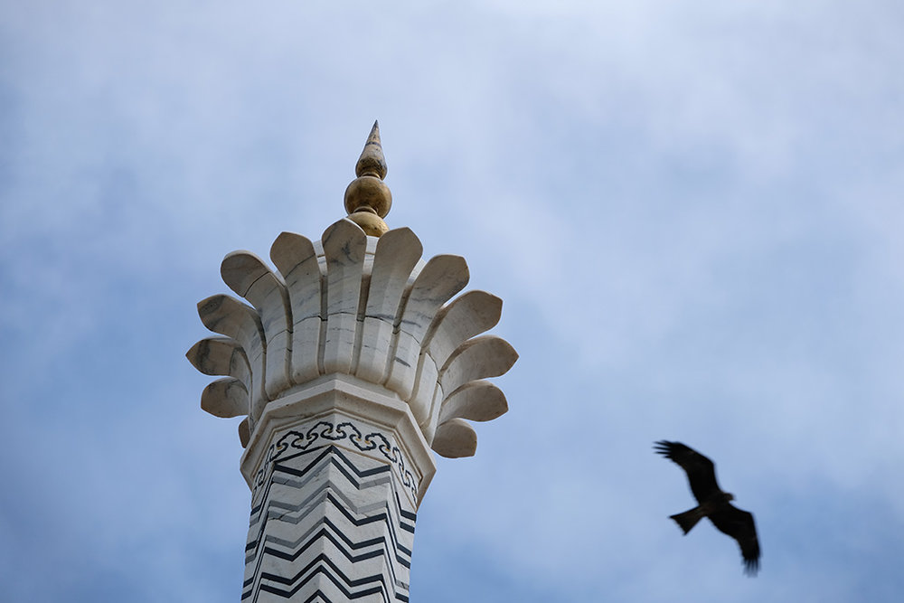 A Black Kite and one of the spires on the Taj Mahal
