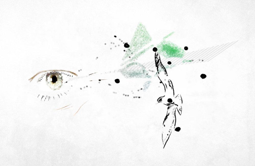 main eye image crop for website.jpg