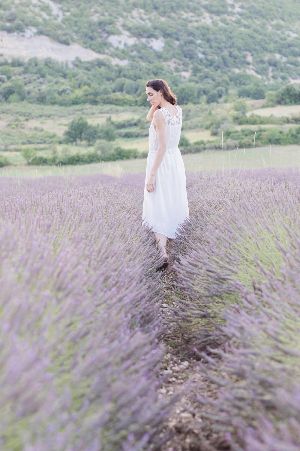 elopement in provence lavender