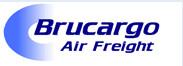 logo - Brucargo Airfreight.jpg