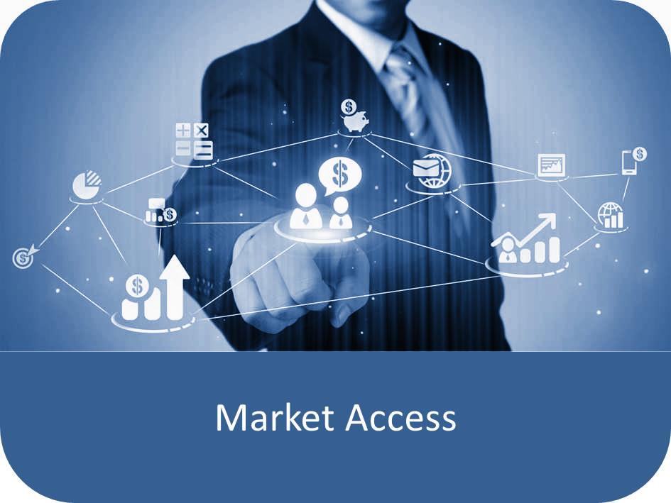 Market Access v2.jpg