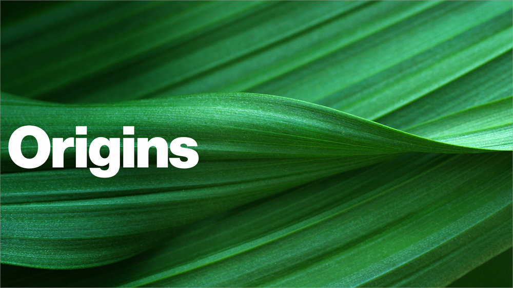 Origins - At Origins, you'll go through the Mission, Vision and Values of The Bridge Bible Church. It's a great class to get an overview of what it means to be a Covenant Partner at The Bridge Bible Church.