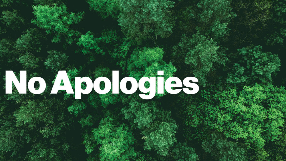 No Apologies - Why do you believe Jesus is alive?