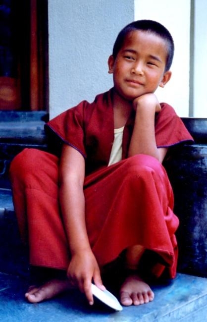 Shelri Dölpo Rinpoche, a Tibetan tulku – Photo: Daniel Reid, Cc.2.0