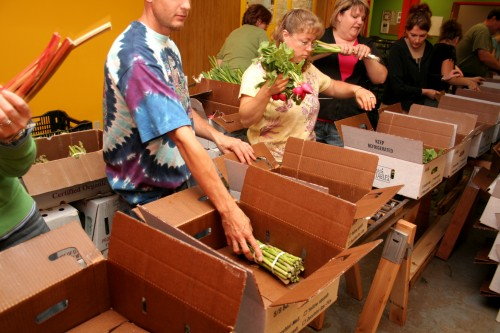 "The Collaborative uses ""Congregation"" rather than ""Community"" supported agriculture to generate boxes of produce for purchase and provision to low-income members.  –  Photo: Sandor Weisz"