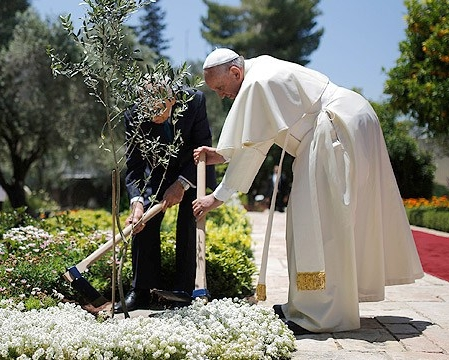 Pope Francis planting an olive tree with Israeli President Sherman Peres – Photo:  Pinterest